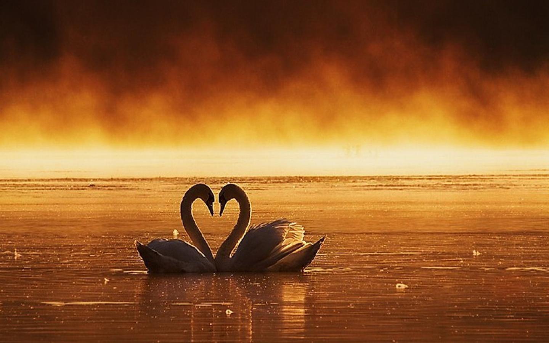 aşk büyüsü - Kolay Aşk Büyüsü Nasıl Yapılır ?