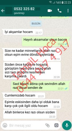 Screenshot 20181115 222352 WhatsApp 250x450 - Sevgi Vefki