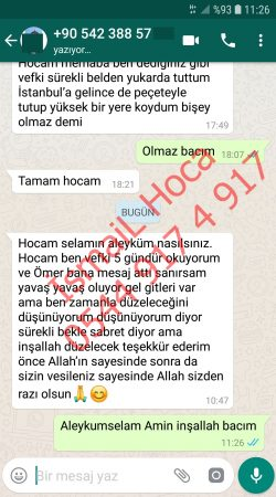 Screenshot 20190607 112658 WhatsApp 250x450 - Fransa Medyum Hoca