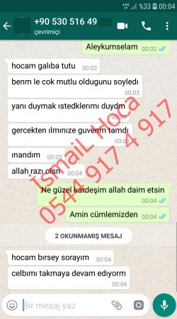 Screenshot 20190608 000451 WhatsApp 250x450 - Sevgi Vefki